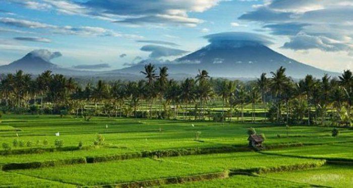 Landscape Pertanahan Dan Lingkungan