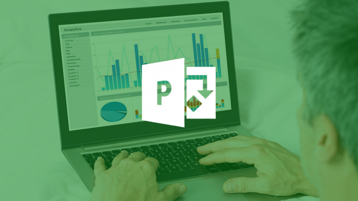Microsoft Project 2016 Basic and Intermediate
