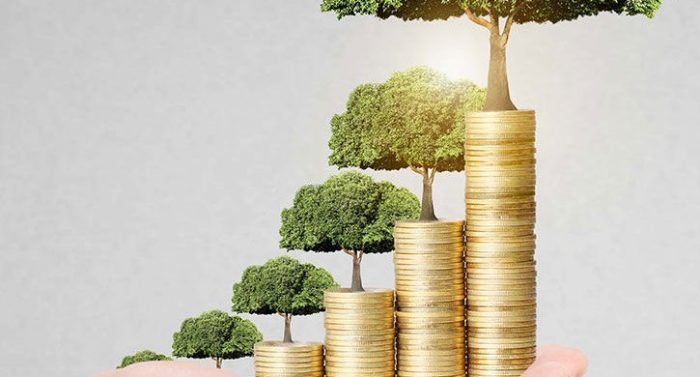 PELATIHAN MICRO BANKING FOR MANAGER