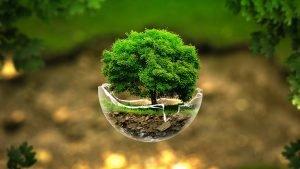 Training Komunikasi Lingkungan