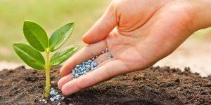 Training Pupuk Organik : Pengolahan Bahan, Pembuatan Produk, dan Penerapan Pemakaian