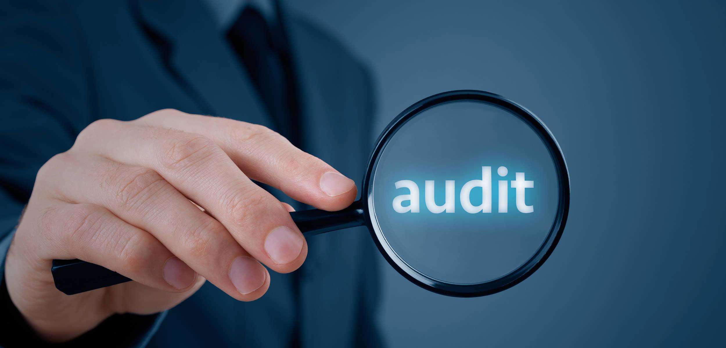 Training Audit Internal RSPO SCC